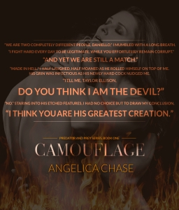 Camouflage Teaser_final